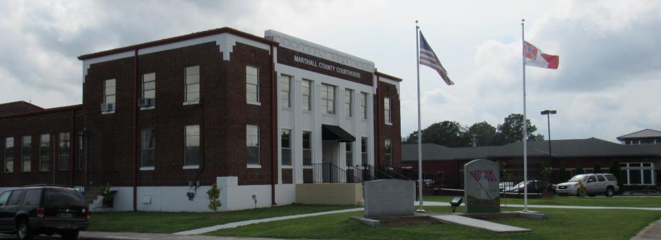 drivers license office in guntersville al